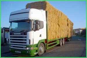 haylorry