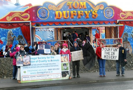 Last year's DSPCA protest at the caging of exotic animals at Duffy's Circus.