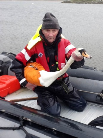 Conservation ranger Larry McDaid holding a sick mute swan.