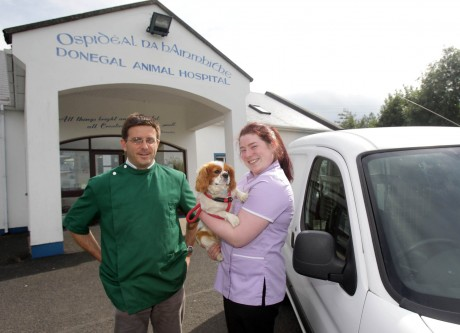 Brian Gormley, Veterinary Surgeon and Orlaith Dolan, Veterinary Nurse.