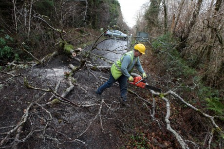 A Donegal County Council worker clears a fallen tree on the road between Gartan and Glendowan