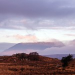 Muckish looking atmospheric in the morning light during the week.